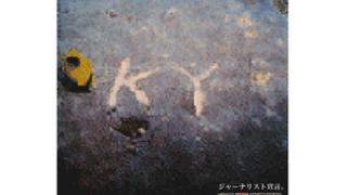 フェイクニュース朝日新聞 安倍総理も認定 民進党議員「朝日新聞は十分信用できる新聞社!」安倍総理「wwwww」