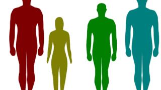 【悲報】背の高さとIQの高さは比例する