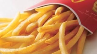 マクドナルドのポテトにトカゲ混入 → 画像