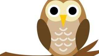 ◆ファンタジー◆に出てきそうな癒し系フクロウさん → 画像