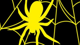 世界中の蜘蛛が年間に食べる昆虫の量が凄い・・・
