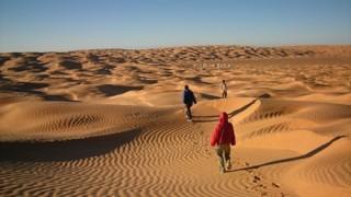 てるみくらぶ「サハラ砂漠から自力でもどれ」自力で帰国する旅行者の難易度…資産状況が明らかに