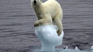 【必見】15階建てビルと同じ高さの巨大氷山 カナダ東部に漂着