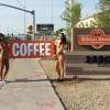 【全米ブーム】オッパイ丸出し美女が接客「トップレスコーヒー」の様子 画像と動画