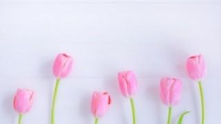 【春ですね】小田急でヤバ過ぎる婆さんが撮影される