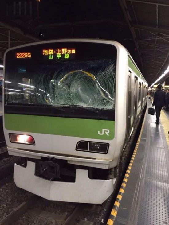 wpid-train445543443444-550x733