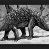 【画像】恐竜の『完全な姿』をとどめた化石がクソかっこいい!
