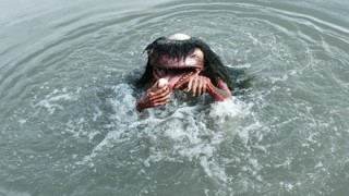 【河童伝説】カッパは蛙だった!? 捕獲された超巨大カエルが話題 →画像