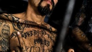 ブラジャー付けて女装 脱獄を試みた「中米ギャングのボス」の末路 →画像