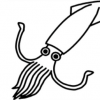 【動画像】ヤドカリに『擬態』するイカが凄いwwwww