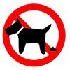 【画像】タイで大人気の『犬のふんスイーツ』がリアルすぎて臭wwwwww