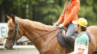 乗馬クラブの先生 馬になり生徒に調教される