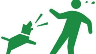 警官が尾を振り歩み寄る犬に発砲 監視カメラ映像が話題に ※警官目線の動画アリ※