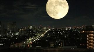 【衝撃?】月の『本当の色』が話題