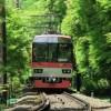 【画像】「電車にケダモノが乗ってきたwwwwwww」