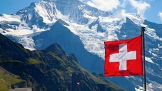 スイスで日本在来種の害虫が見つかり国中が大騒ぎにwwwwwww