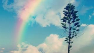 【画像】珍しい『ピンク色の虹』が出現