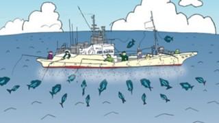 カツオ漁船で1年働いてみた結果 給料明細が話題