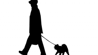 【悲報】東京で悲しすぎる『犬』が見つかる →画像