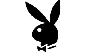 【画像】ガチで可愛すぎるウサギさんが見つかる