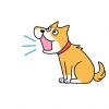 4!と鳴く犬が発見される
