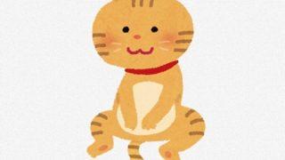 可愛すぎる『世界で最も恐ろしいネコ』と『世界一小さいネコ』→GIfと動画