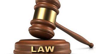 世 界 の ト ン デ モ 法 律 で 打 線 組 ん だ