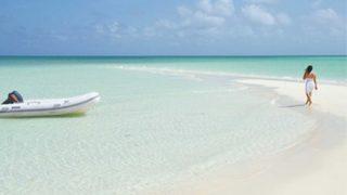 寄生虫の幼虫に入り込まれた足 →画像 カリブ海のビーチ歩き発症