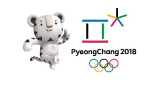 【チ〇コマン】平昌オリンピック会場に『謎オブジェ』とんでもないもんが建ってると話題