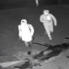 【完全にコント】監視カメラに映ってた『マヌケな強盗』の映像が公開
