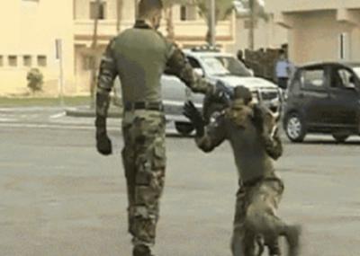 【最強防御術】銃で脅された時 命乞いするフリして逆転する方法