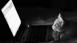 スリープしてるパソコンが勝手に目覚める原因なんなの?