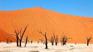 【環境】日本人地理学者さんアフリカの砂漠に『ゴミ』をまいた結果 →画像