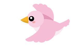 【画像】鳥のおっぱいwwwwwwwwww
