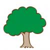 木の中から水が湧き出る不思議な光景 →GIfと動画