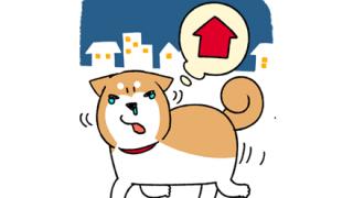 【ニュース解説】放置された犬を保護して飼育 ⇒ 返還要求、裁判に発展