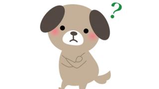 【解読成功!】パヨさん新語「あのさぁ、血税どんかいワンワンかわかってんの?」