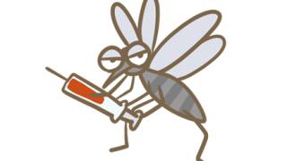 【知ってるかな😏】蚊に刺された時に一瞬で痒みを無くす方法