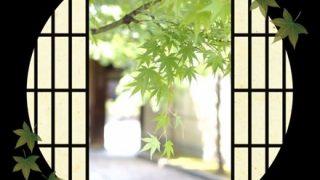 『日本の美』を感じる画像を下さい