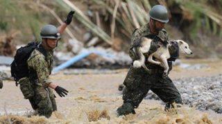 【悲報】西日本豪雨『パヨクが流したデマ一覧』災害に便乗して嘘で政府叩きとか酷すぎないか?