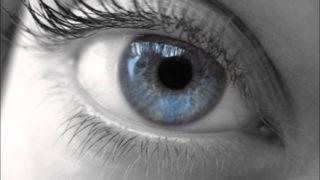 【悲報】色盲の見てる世界、ガチで悲惨すぎる ⇒画像