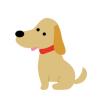 【最強ワンコ】マフィアが犬に『懸賞金』犯罪組織が恐れる麻薬捜査犬「ソンブラ」がこちら →画像