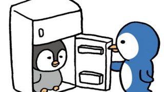 【画像】2週間ぶりに冷凍庫開けたらとんでもない事になってたwwwwwwww