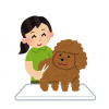 【話題】まんまるにトリミングされた犬が海外で話題に →画像