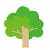 【朗報】ベトナムにはおっぱいが成る木があるらしい