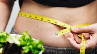 【発表】体内脂肪の3分の1を18日間で減少可能なタンパク質が発見キタ━━━━(゚∀゚)━━━━!!