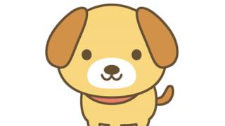 【優しい】女子高生さん溺れた犬を助けに制服のまま11月の冷たい川に飛び入る