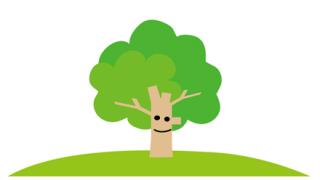 【画像】この木、謎らしいよ