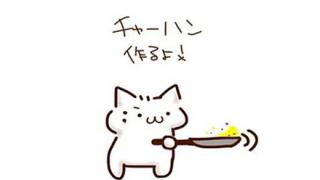 「中国の炒飯を全自動で作るマシーンが凄い」と話題に ⇒ 日本製品でしたw