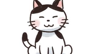 【画像】ネコさん 専用のコタツを買ってもらいご満悦